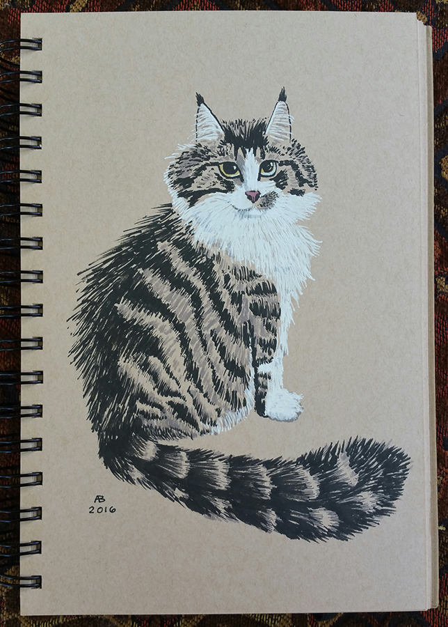 An illustration of a Maine coon tabby cat sitting upright, fluffy striped tail curving outward to the right.
