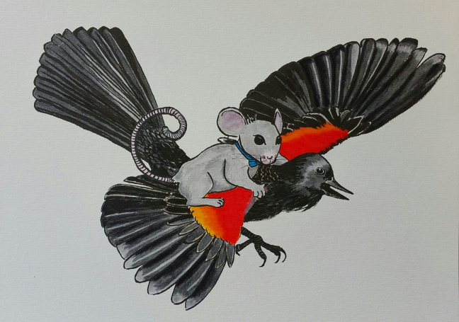 A grey mouse wearing a blue bowtie rides on the back of a red-winged blackbird in flight.