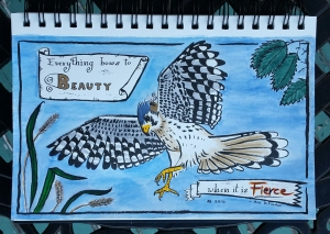 "A kestrel descends from the sky. Behind him are grasses from the ground and the leaves of a tree. Across two scrolled banners is an Ani DiFranco quote: ""Everything bows to beauty when it is fierce""."