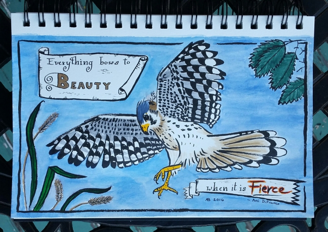 A kestrel descends from the sky. Behind him are grasses from the ground and the leaves of a tree. Across two scrolled banners is an Ani DiFranco quote: