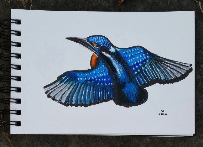 A common kingfisher in flight. The bird's plumage is a rainbow of orange, blue, and green.